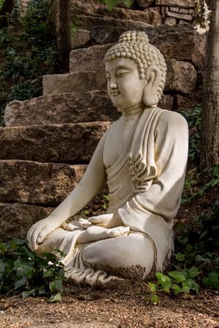 The buddha - D'alijo retreat centre