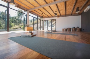 Freh and new yoga equipment