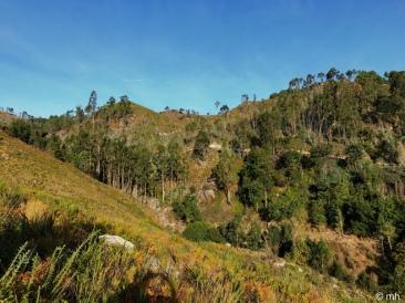 Green hills, blue skies....