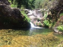 Peaceful at nature