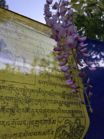 Sanskrit texts