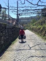 Portuguese setting