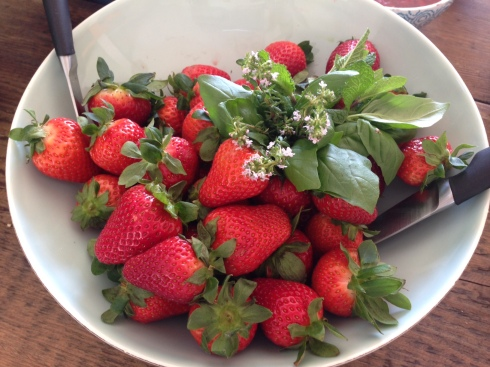 Juicy strawberries with brunch